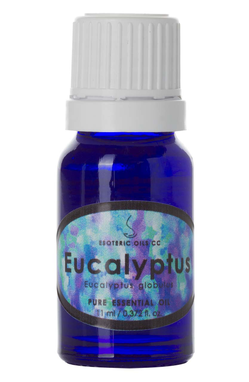 eucalyptus-essential-oil